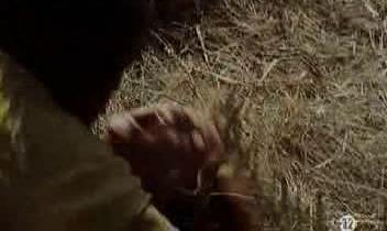 Viol sur le sol du film Dupont Lajoie